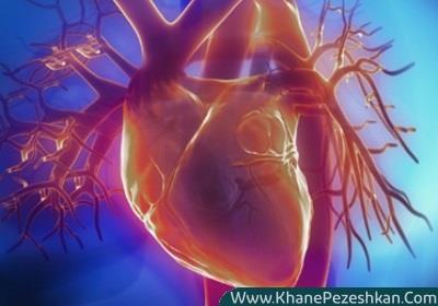 5 رفتار و عادت اصلی در بروز بیماریهای قلبی عروقی