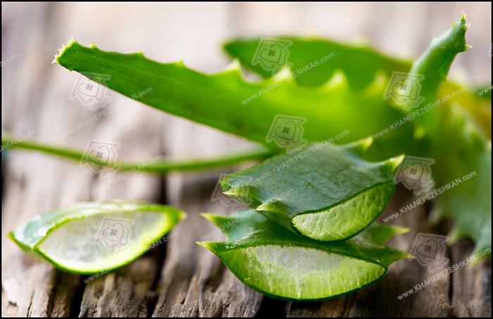 گیاهان دارویی و خواص آنها