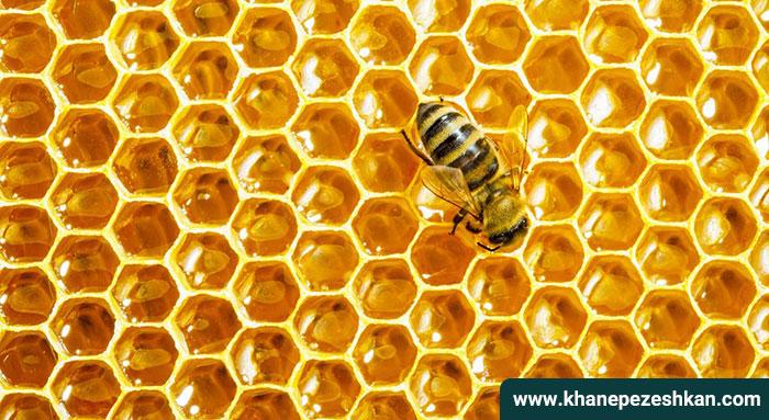 عسل غذایی برای تمام بدن